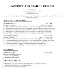 my resume template free pdf resume lidazayiflama info