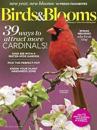 Backyard Birding Magazine Birds U0026 Blooms Magazine April May 2017 Edition Texture