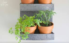 crafty kitchen witchery hanging indoor herb garden