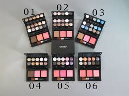 mac make up kit 10 color eyeshadow 2 blush