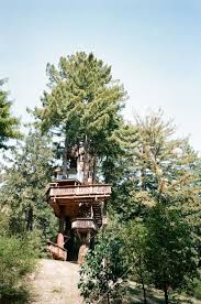 74 best tree house images on pinterest treehouses home and places