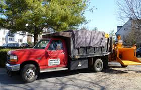 your friendly local professional tree service company