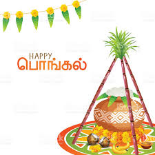 south indian festival happy pongal celebration concept stock vector