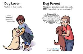 Dog Lover Meme - 7 differences between dog lovers and dog parents