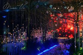 google themes lights rain wedding theme google search my dream wedding pinterest