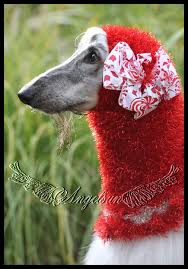 afghan hound snood stassi u0027s snood shoppe