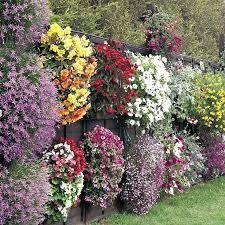 Gardening Ideas Pinterest Pinterest Container Garden Ideas Best Backyard Ideas For