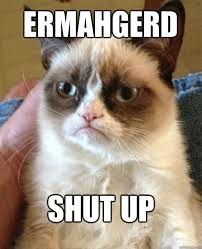Ermahgerd Memes - ermahgerd shut up cat meme cat planet cat planet
