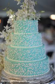 best 25 aqua cake ideas on pinterest black white cakes teal