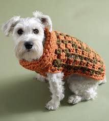 how to crochet a puppy sweater crochet and knit