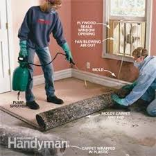 How To Clean Mold In Bathroom How To Remove Mold Mold Remediation U2014 The Family Handyman