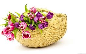 hd images of flowers flowers basket wallpapers hd pictures u2013 one hd wallpaper pictures