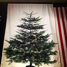 i this tree wall hanging from ikea