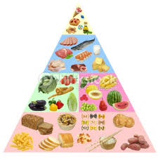 food pyramid stock photos and illustrations royalty free images