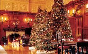 luxury christmas tree decorations rainforest islands ferry