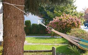 hanging a hammock it u0027s easier than you think maine heritage