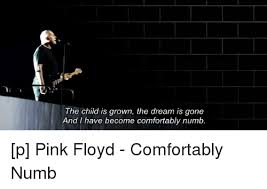 Lyrics For Comfortably Numb 25 Best Memes About Comfortably Numb Comfortably Numb Memes