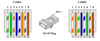 cat 5 wiring diagram b cat wiring diagrams instruction