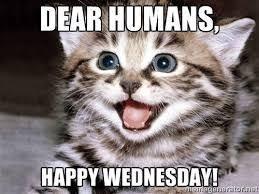 Wednesday Meme - 54 best wednesday memes images on pinterest good morning hump day
