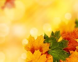 free yellow autumn backgrounds for powerpoint nature ppt templates