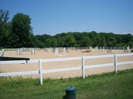 Outdoor Arena Lights by 560 Best Sue U0027s Equine Arenas Images On Pinterest Dream Barn