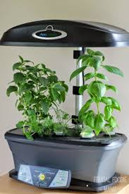 35 best life with the aerogarden images on pinterest indoor