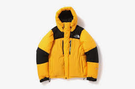North Face Jacket Meme - the north face just dropped a new baltro light jacket