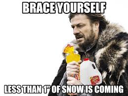 Southern Memes - mentioning snow in the southern u s south carolina pinterest