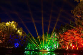 enchanted forest of light tickets enchanted forest one of many highlights of a perthshire visit the