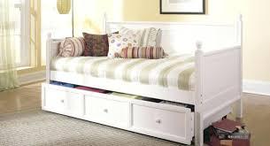 Ideas For Toile Quilt Design Ideas For Toile Bedding Sets Design Cynthia Rowley Pc Script