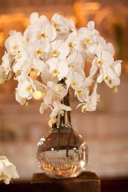 orchid centerpieces wedding orchid centerpieces orchid centerpieces orchid wedding