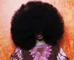 logest pubic hair ginniss book of rec ords dugas the world s largest afro 23 pics