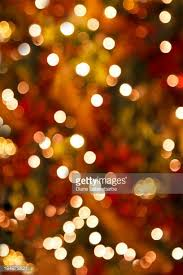 christmas trees stock photos and pictures getty images