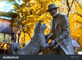 November Tokyo by Tokyo Japan November 28 2015 Hachiko Stock Photo 474929923