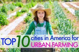 Urban Garden Los Angeles Urban Agriculture Inhabitat Green Design Innovation