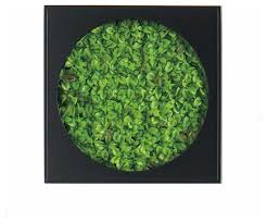 gold leaf design mini green wall succulent mat contemporary