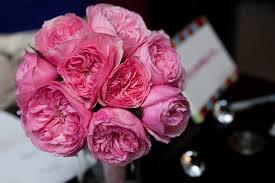 Peonies Season Choosing Flowers In Season The Yes Girls