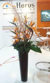 2 od orange bird of paradise twig foliage in large black vase