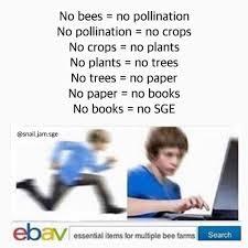 Edit Memes - save the bees memes meme mulan