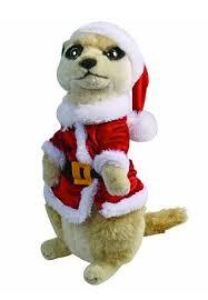 meerkat gifts the cutest meerkat gifts on the net