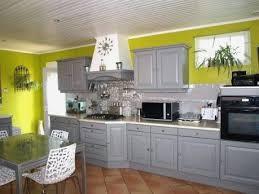 cuisine vert anis cuisine verte et grise unique cuisine grise mur vert anis de