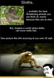 Sloth Meme Jokes - list of synonyms and antonyms of the word scary sloth