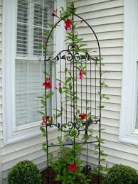 Ideas For Metal Garden Trellis Design Corner Garden Trellis Hydraz Club
