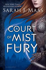 quotes about reading cassandra clare a court of mist and fury quote compendium a midnight reader
