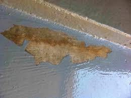 help with garage floor coating specialty coatings