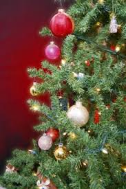 How To Decorate A Christmas Tree With Ribbon Garland How To Decorate A Christmas Tree Like A Pro Lovetoknow