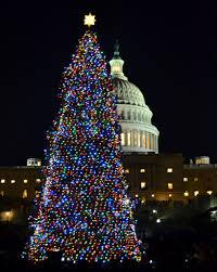 Christmas Tree High Resolution Colorado Pride On Display With U S Capitol Christmas Tree