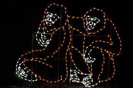 Washington Dc Zoo Lights Zoolights Photos Holiday Lights At The National Zoo