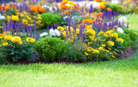 Landscaping Summerville Sc by Landscaping Service Summerville Sc Affordable Landscaping