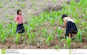 Hmong Map Black Hmong Woman With Her Children Sapa Vietnam Editorial Stock